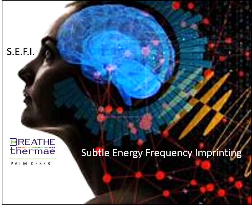 SUBTLE ENERGY FREQUENCY IMPRINTING (S.E.F.I.)